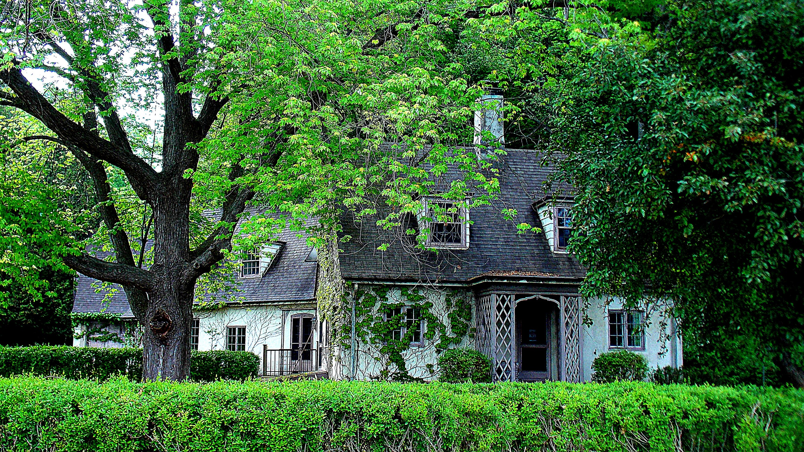 Vine Covered House - Seneca Pt. Rd